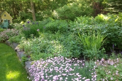 Landscape mcd pic mid spring