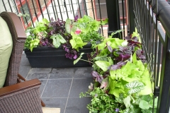 CONDO PLANTING CONTAINERS