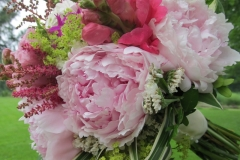 opening pic peony 020