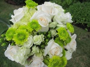 Sagamore Green & White