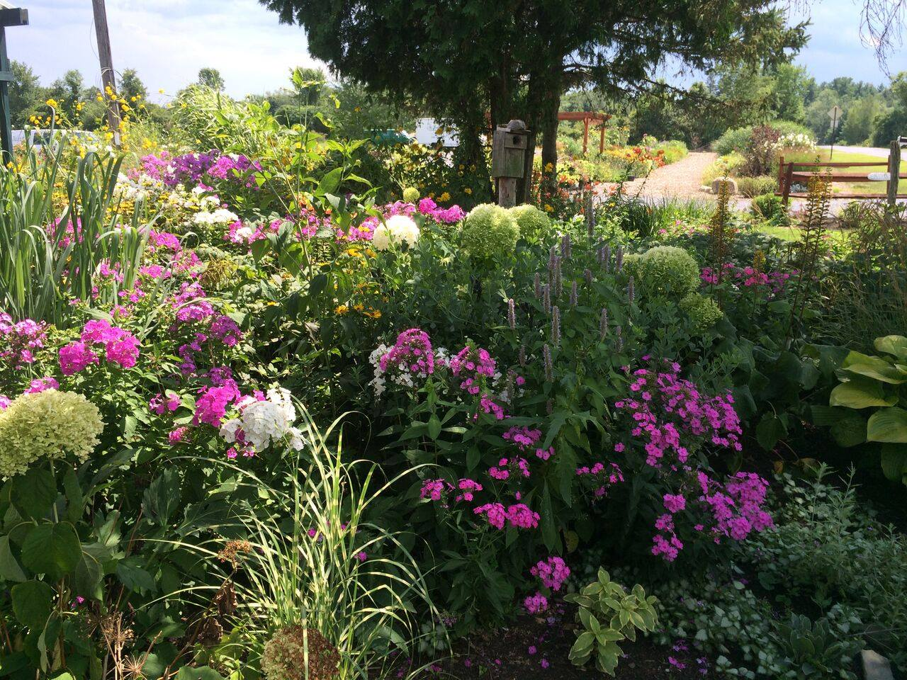 get gardening with our spring classes – balet flowers and design